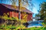 Peter Brolin, Tidaholms FK, Speglingar vid Vatten, Brons 1/3